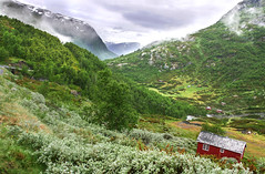 Field of Dream, Norway (Simon__X) Tags: travel blue vacation sky panorama sun mountain holiday seascape tree simon love nature