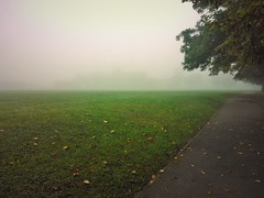 fog (Lucien George) Tags: morning autumn winter sky tree nature water field grass fog photography grey george natural dew tired lucien
