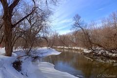 170331-06 Rivière St-Charles (clamato39) Tags: parclessaules villedequébec provincedequébec québec canada rivièrestcharles river ciel sky neige snow hiver winter