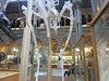 the attendant's stare (cleanskies) Tags: ounhm oxfordnaturalhistorymuseum museum tyrannosaur chicken giantchicken skeleton
