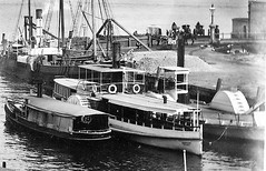'S.S. Possum' (1884 - 1911) - Milson's Point wharf (Great Lakes Manning River Shipping NSW) Tags: photo6355913885 glmrsnsw historicmanningvalley taree tareensw manningrivernsw harrington rockdavis blackwall brisbanewaternsw northshoresteamferrycoltd sspossum steamerpossum xglmrs ejsaxby ferry passengerferry camdenhavennsw portmacquariensw hastingsrivernsw wwallbridge glmrsnswfishingboats woodenship launch fishingboat midnorthcoastnsw beautifulgreatlakes manningriver sydneyferry possumxglmrs milsonspointnsw milsonspointwharf australiandairyingcompanyltd crowdy head crowdyheadnsw trawler milsonspoint purfleet purfleetnsw