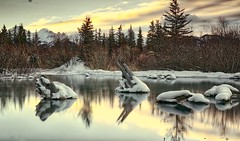 Stumps at Vermillion Lakes Banff (John Andersen (JPAndersen images)) Tags: alberta banff canada canon6d cloudslongexposure dawn jpandersenimages morning mountrundle park sunrise