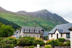 DSC_5626 (valeryzyuz) Tags: scotlanda