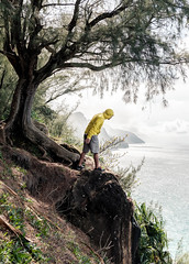 Na Pali Coast Trail (larriedon) Tags: fujifilm fujixseries fujifilmxpro2 fuji xf23mm nature napalicoast hawaii kauai