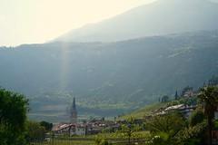 Sunshines on Tramin. (Max^M) Tags: vin italie italien italy sun weinberg tramin südtirol wein wine