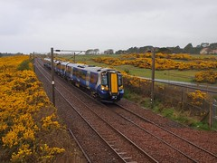 Troon Lochgreen - 380101 11.53 Edinburgh - Ayr - 14-04-2017 (7) (agcthoms) Tags: scotland ayrshire troon lochgreen railways trains scotrail class380 380101