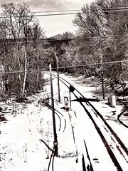 The Long And Winding Road (Professor Bop) Tags: professorbop drjazz olympusem1 hoosickfallsnewyork rail railroad railway monochrome snow winter