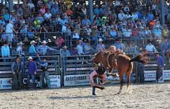 P3110254 (David W. Burrows) Tags: cowboys cowgirls horses cattle bullriding saddlebronc cowboy boots ranch florida ranching children girls boys hats clown bullfighters bullfighting
