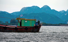 Boat rider (albertlondon) Tags: vietnam mekongriver fishermen fishingvillage halongbay saigon hanoi boats fishing