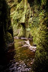Finnich Glen (KenOH) Tags: finnichglen scotland lochlomond devilspulpit outlander