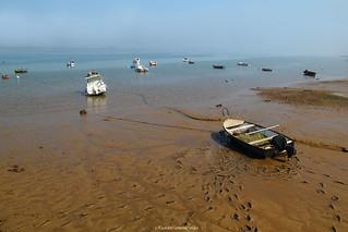 Pisadas en la marea baja - Footprints at low tide