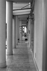 Colonnato - Lecce (pierocarrozzo) Tags: praktica tl 1000 kodak tmax 400 800 plustek 8200i salento porticato colonnato lecce micad bar narnia