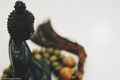 Queira o que tem e sempre terá o que quer. (Dede_Sep) Tags: buda buddhism budismo religão filosofia zenbuddhism zenbudismo zen namastê carma karma nir nirvana tibetano dalailama free freedon vibes fotografia photography foto photo travel travelller trip travelling viagem bda myhome live viver meditar refletir goodvibes