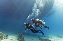 1204 13a (KnyazevDA) Tags: disabled diver disability diving owd underwater undersea padi redsea buddy handicapped paraplegia paraplegic