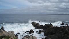 IMG_6134 (cheryl's pix) Tags: california pacificgrove pacificgroveca