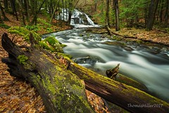 Logs by the stream (the SkyHum) Tags: landscape longexposure waterfall water stream brook creek river trees nature newhampshire newengland