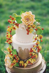 Greeny Cake (Qwedgeonline) Tags: cake baking bakery sunset