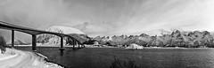 The joys of Lofoten islands hopping :) (lunaryuna) Tags: norway lofoten lofotenislands lofotenarchipelago gimsoystraumen seastrait bridge gimsoystraumenbru landscape panorama panoramicviews coast seascape winter season seasonalbeauty mountainrange architectureinnature road snow sky clouds blackwhite bw monochrome lunaryuna