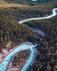 Aerial Drone Photos (spaceCityDrone) Tags: ✖️ one direction amazing view sunwapta falls featured deftony83 spacecitydrones droneheroes|freewellpro|dronelife|droneofficial| drones|aerialaesthetics|iamdji|drone|dronespace|thelensbible|dji|passionpassport|dronemultimedia|dronegear|dronepilots|mightydreamers|skypixelz|dronesetc|dronesdaily|flightography|bevisuallyinspired | dronestagram dronefeeling aerialphotographypros droneoverview
