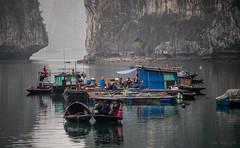 Ha Long - floating village (Šmizls) Tags: sonyalpha7ii sea southchinasea boat halong baytulong mist rock floatingvillage unesco people minoltabeercan vietnam
