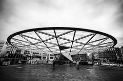 Under the dome (Tom Cuppens) Tags: bruxelles brussels brussel rogiersquare rogierplein placerogier bw blackandwhite noiretblanc zwartwit architecture architectuur belgium belgique belgie