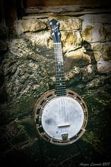 Ludwig Wendell Hall (Angus Lamont) Tags: ludwig wendell hall banjo ukulele banjolele ukelele chicago 1927 vintage antique outdoor 700d canon