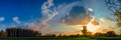 Panorama-2005 (EB_Creation) Tags: panorama handheld lightroom nikon nikond7100 amateur amazing color blue bluesky clouds cloud green grass tree trees nature natural sigma sigma170700mmf2840 silhouettes sillhoutte stunning 2017 camera lens digital sunset sun yellow