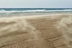 Nubes de arena (ZAP.M) Tags: plage playa narutaleza nature paisajeplaya viento levante arena nikon nikon5300 zapm mpazdelcerro elpalmar conil cadiz andalucía españa flickr