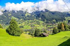First_19Aug16_110004_47_6D-2 (AusKen) Tags: switzerland grindelwald bern ch
