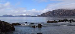 DSC_0446 (jaykaydub_) Tags: pasagshakrecreationalarea pasagshak kodiak alaska alaskanadventures beach mountains