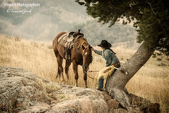 Cowgirl Photo AJS_1027 (cheroyori) Tags: cowgirl horse horses west western travel lifestyle landscape heritage girl assignment editorial photographer stock image images photo photos photograph photographs photography picture pictures print prints fineart