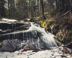 Spring (JH') Tags: nikon nikond5300 nature d5300 water wideangel waterfall exposure rocks rock trees tree travel photoshoot photography sigma sweden forest season landscape longexposure colors green grass naturephotograph beautiful mountain spring