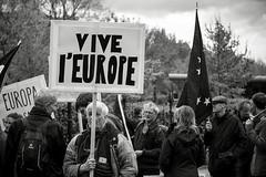 Small protest © Inge Hoogendoorn (ingehoogendoorn) Tags: europa europe viveleurope verkiezingen frenchelections museumplein amsterdam frankrijk france protest demonstratie demonstrant eu streetphotography straatfotografie thenetherlands netherlands
