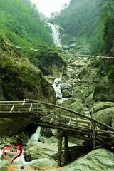 Naga Waterfalls (Samanvay15) Tags: sikkim northsikkim lachung nature waterfalll travel