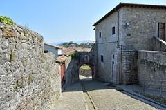 _DSC1717 (SLVA49) Tags: portal empedrado muralla casco cantabria nikon df 2470mm