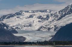Glacier Towers (asaggiomo1983) Tags: alaska juneau glacier mendenhallglacier landscape mountains snow outdoors nikon icefield