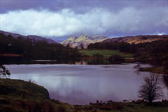 loughrigg tarn (Ron Layters) Tags: loughriggtarn lake water langdalepikes light fells mountains tarn ripples lakedistrictnationalpark landscape clouds hillside mountain hill lakedistrict eleterwater ambleside cumbria england slidefilmthenscanned slide transparency fujichrome velvia leica r6 leicar6 ronlayters