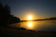 ...Morgenstimmung (jueheu) Tags: see lake wasser water sonne sunset sunrise gelb yellow blau blue quendorfersee natur nature natura morgens morgenstimmung nebel fog landschaft landscape schüttorf grafschaftbentheim niedersachsen deutschland duitsland germany