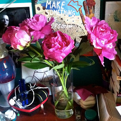 Peonies  June 6, 2013 (mrbosslady) Tags: flowers art desk vase peonies 2013