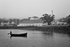 Talisker Distillery (Leveneur) Tags: whisky distillery mouette talisker ecosse