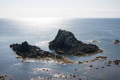 8  (GenJapan1986) Tags: travel sea japan landscape island hokkaido        2013 rebunisland  ricohgxr 8