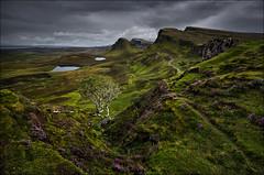 [ ... quiraing ] (D-P Photography) Tags: sky mountain storm tree green rain weather dark scotland heather dramatic nd schottland trotternish quiraing ndgrad trotternishridge leefilters canoneos5dmarkiii ndsoft