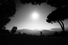 Tutto dov'era, com'era (bebo82) Tags: trees blackandwhite bw sun mist alberi pentax sole biancoenero montecassino abbazia foschia pentaxk20d pentaxk20 ildefonsorea