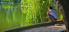 Early morning fishing - Ho Hoan, Kiem, Hanoi, Vietnam (lyon photography) Tags: summer sunlight lake fish man water sport landscape fishing fisherman sitting path relaxing earlymorning peaceful hobby vietnam willow catch leisure hanoi tranquil poised pursuit crouching overhang millpond hohoankiem