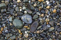 Beach Stones 2 (Mabry Campbell) Tags: morning usa beach nature photography coast us photo rocks photographer unitedstates image stones unitedstatesofamerica maine smooth newengland august coastal photograph kennebunkport 320 beachstones f35 200mm architecturalphotography commercialphotography smoothstones 2013 ef200mmf28liiusm northeastus ¹⁄₂₀₀sec northeastunitedstates eos5dmarkiii mabrycampbell august142013 houstonarchitecturalphotography 201308140h6a5507
