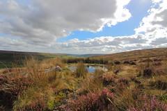 Rosedale Spring (hanley27) Tags: sky cloud reflection clouds reflections landscape heather yorkshire moors northyorkmoors rosedale blakeyridge