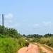 Dirt roads of Nigeria, Edo state