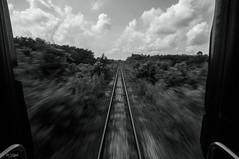 ESCAPE II (my effendi) Tags: blackandwhite bw cloud train landscape thailand nikon cloudy railway wideangle tokina slowshutter handheld panning hatyai apen effendi d90 tangkoi myeffendi effendimohdyusof