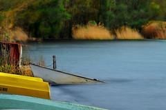 abandoned boats (Lillo1971) Tags: old autumn lake abandoned nature water colors boats lago boat long exposure barca natura barche acqua autunno colori abandonment lunga esposizione abbandono tuscia lagodivico canon600 monticimini lillobar lillo1971 vision:outdoor=0964