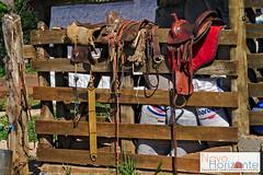 materiais (Rodnei Reis Fotografia Sacramento/MG/BR) Tags: wood horse amigos minasgerais brasil paisagem cavalos cerca cavalo madeira cela novohorizonte hippotherapy equoterapia darktable